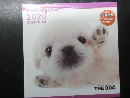 2020年ペキニーズカレンダー ペットショップ 徳島 ペキファーム